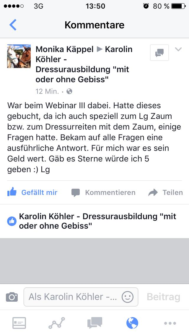 Rezension Webinar III